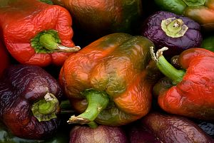 FineArt_MultiColoredPeppers_s.jpg